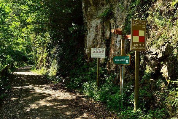 ruta-del-oso2