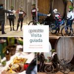 visita guiada llagar Sidra Castañon